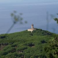 Insel Giglio leuchtturme