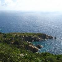 Tauchgänge auf der Insel Giglio