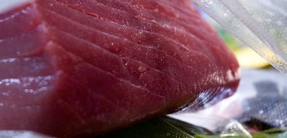 Thunfisch Insel Giglio rezept
