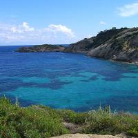 Arenella beach, Giglio