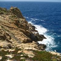 isola del Giglio Capel Rosso