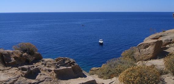 immersioni all'isola del Giglio: Capel Rosso