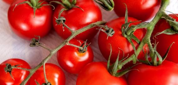 isola del Giglio in 10 ricette: insalata di pomodoro alla gigliese